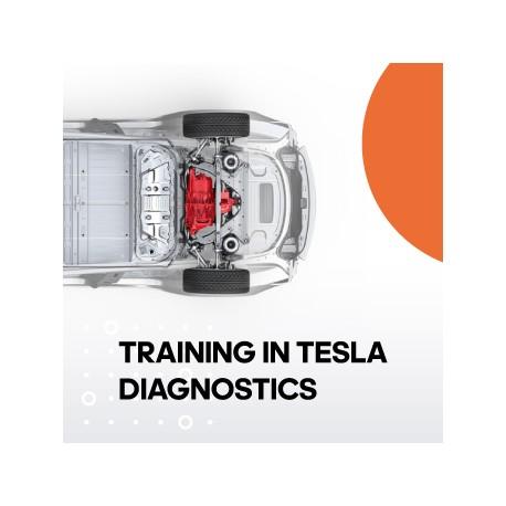 Training in Tesla diagnostics - 1