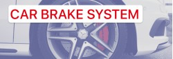 HOW TO CONDUCT BRAKE CALIPER REPAIR: WITH YOUR OWN HANDS OR AT THE SERVICE CENTER?